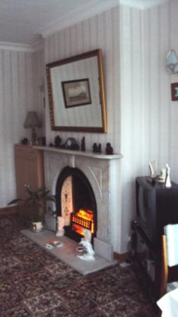 Trassey Room Fireplace